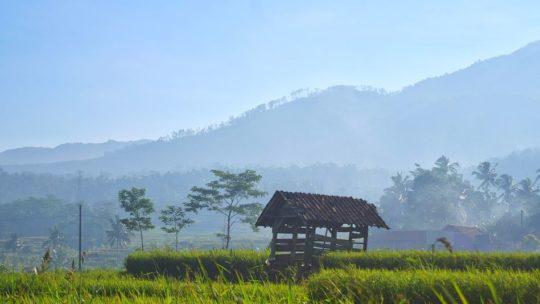 Tourisme en Indonésie : les lieux spécifiques à découvrir