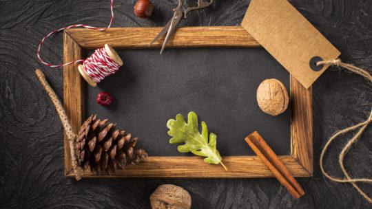 5 conseils pour une décoration d'intérieur plus écologique et responsable